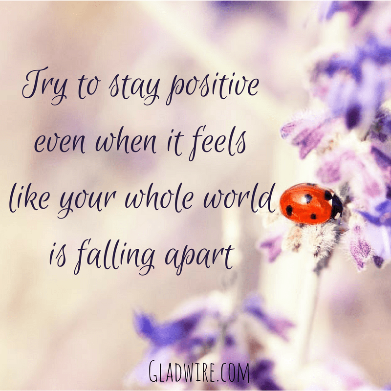 You'll Love Our Inspirational & Motivational Quotes
