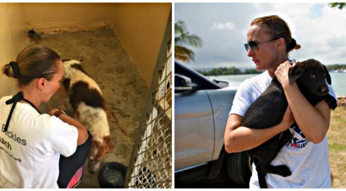 women saves dogs from dead dog beach in puerto rico